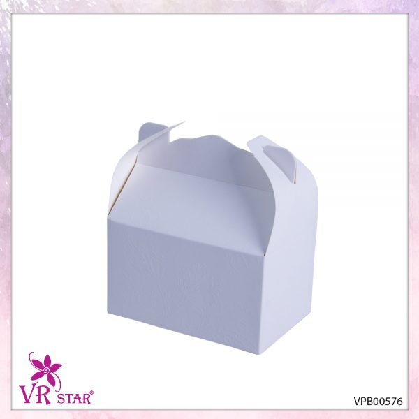 vpb00576-2
