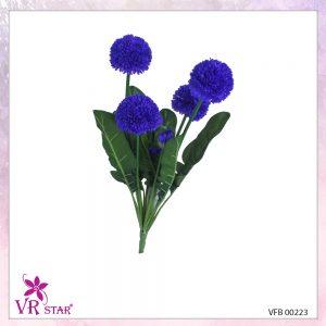 vfb-00223-PP