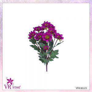 vfb-00225-PP