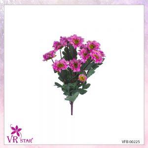 vfb-00225-P