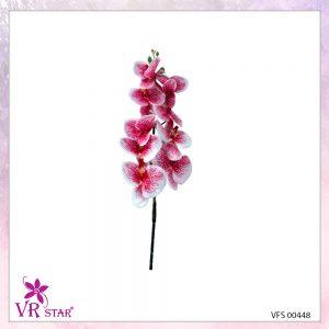 vfs-00448-R