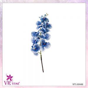 vfs-00448-B
