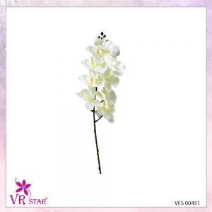 vfs-00451-CR