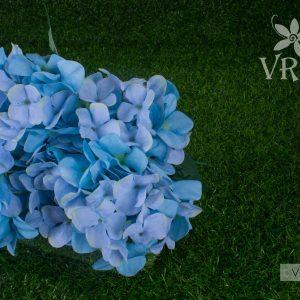 vfb-00395-b
