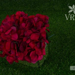 vfb-00395-r