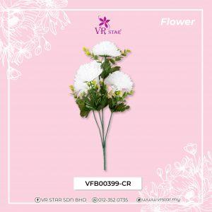 vfb00399-cr